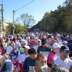 軽井沢マラソン(ハーフ)、走ってきました。