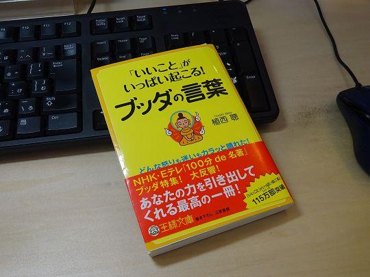 DSC00246-s