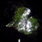 屋久島 縄文杉からパワーを授かる、の巻き